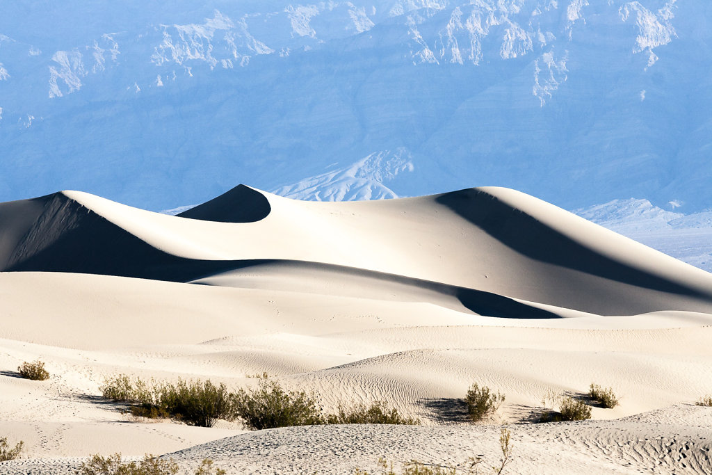 Mesquite Flats Sanddunes at Death Valley National Park